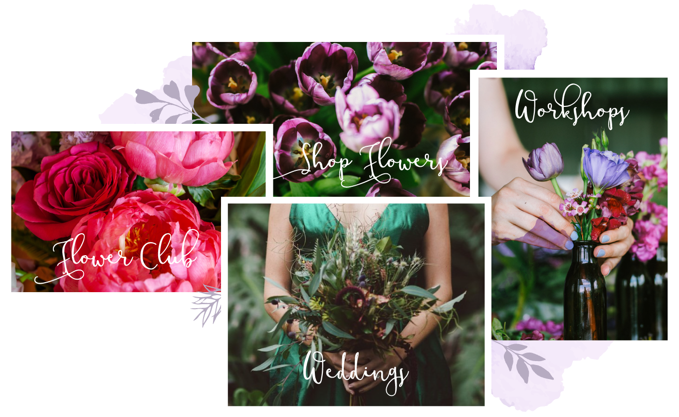 Boutique brisbane florist daily flower deliveries francescas flowers order flowers online contact us to discuss your special event wedding hens party or business function izmirmasajfo